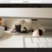 モバイルにも対応!完璧なLightBox「PhotoSwipe」をjQueryプラグイン化しました。